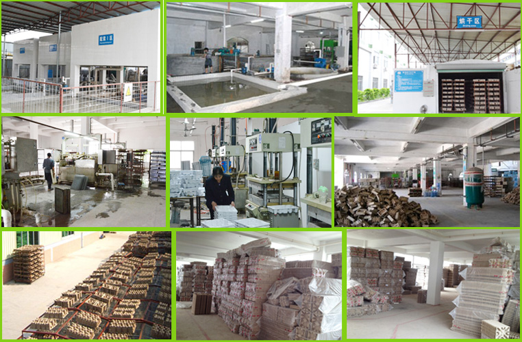 Pulp packaging Factory
