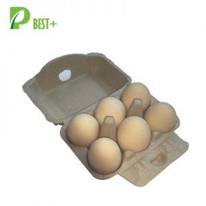 6 Egg Pulp Carton 111