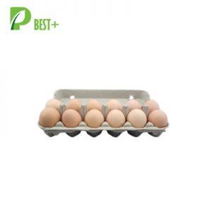12 cells Paper Egg Carton 126