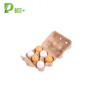 6 Eggs Pulp Cartons Box 187