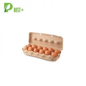Dozen Pulp Egg Box 188