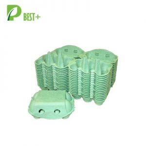 Green 6 Egg Paper Carton 179