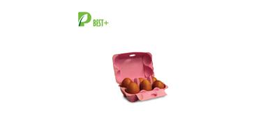 Egg Box Factory Price