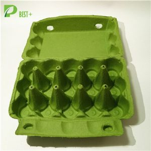 15 Cells Egg Box 194
