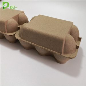 2x6 Cells Pulp Egg Box 191