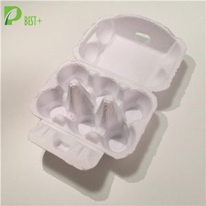 6 Cells Egg Carton 195