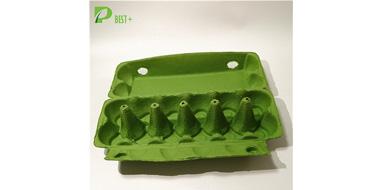 GREEN PULP EGG Cartons