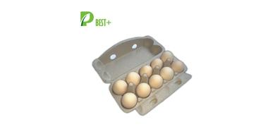 10 holes pulp egg boxes