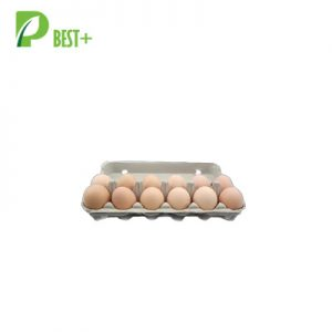 12 Eggs Pulp Cartons Boxes 153