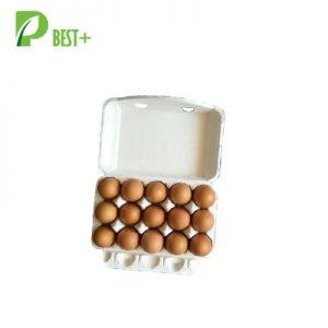 15 Eggs Pulp Cartons 146