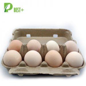 8 Holes Paper Egg Carton 155