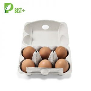 6 cells egg boxes 113