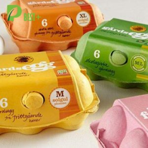 colorful pulp egg cartons 116