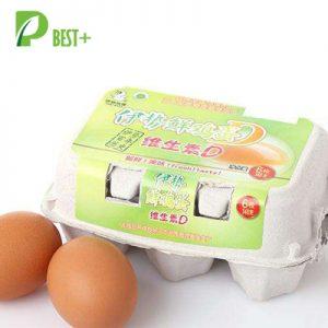 Paper Pulp Egg Carton 117
