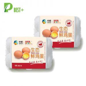 6 holes paper egg carton 118