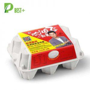 Pulp Paper Egg Carton 119