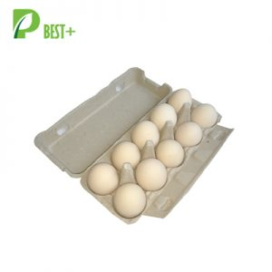 10 Holes Paper Egg Carton 121