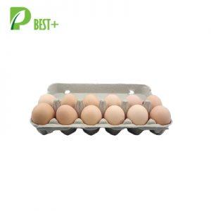Pulp 12 Eggs Cartons 132