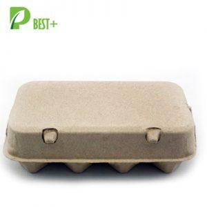 Pulp 8 egg Carton 156