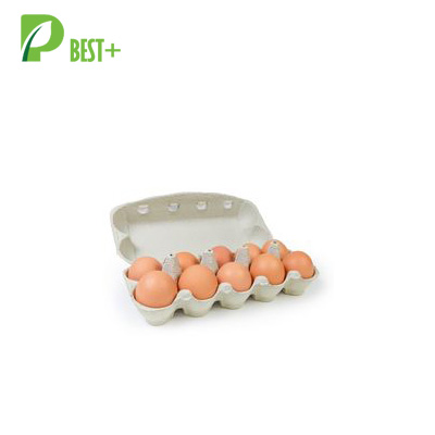 10 Cells Paper egg carton 184