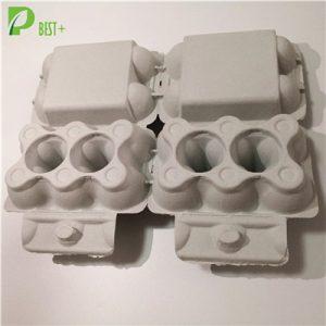 2x6 Holes Egg Carton 198
