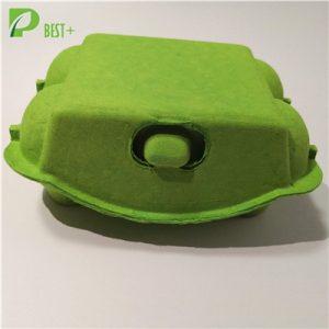 6 Cells Pulp Egg Box 201