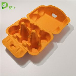 Orange Pulp Egg Pack 216