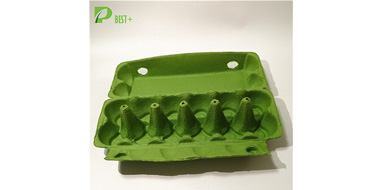 GREEN PULP EGG Cartons