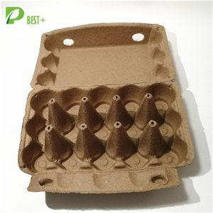 Natural Color Egg Box 220