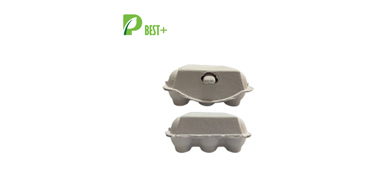 Pulp Egg Carton Box